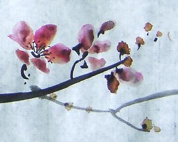 цветущая сакура, мастер-класс