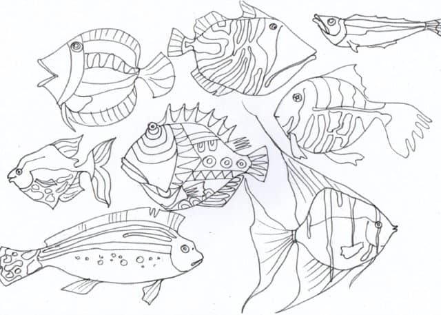 как нарисовать рыбу карандашом