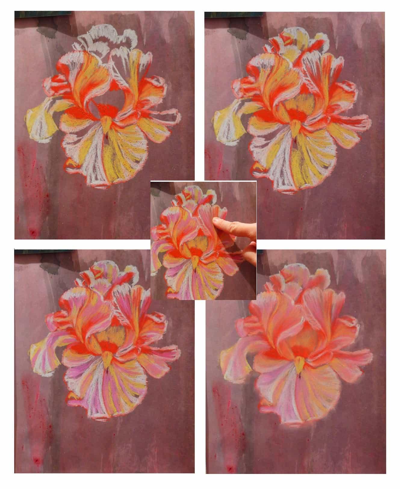 пастель, цветы ирисов, мастер-класс