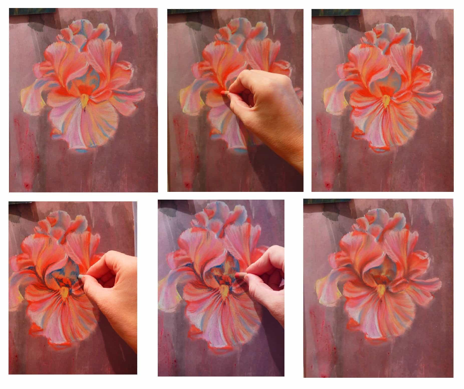 как рисовать пастелью, ирисы