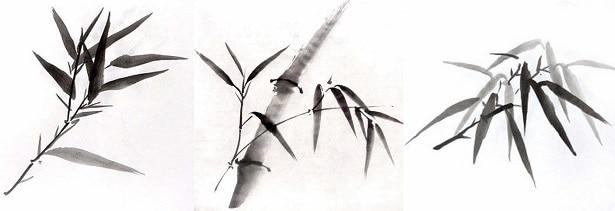 Листья бамбука: видео мастер-класс по рисованию
