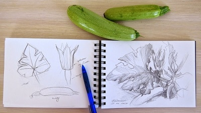 Идеи для рисования: предметы, которые вас окружают