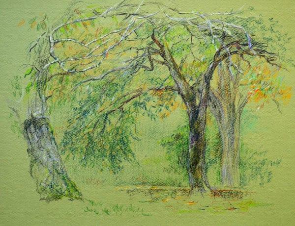 пастель, рисунок цветными карандашами