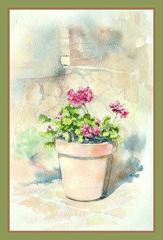 как нарисовать цветок герани