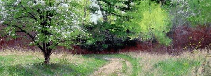 пейзаж с деревьями