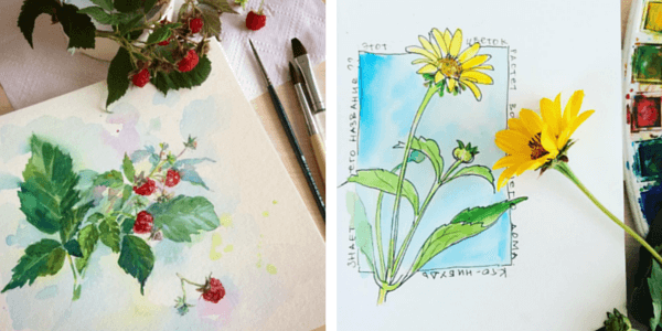 Почему люди рисуют: зарисовки, изучение натуры