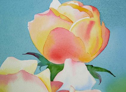 бутон розы, акварель
