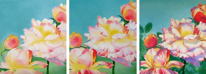 розы, Барбара Фокс