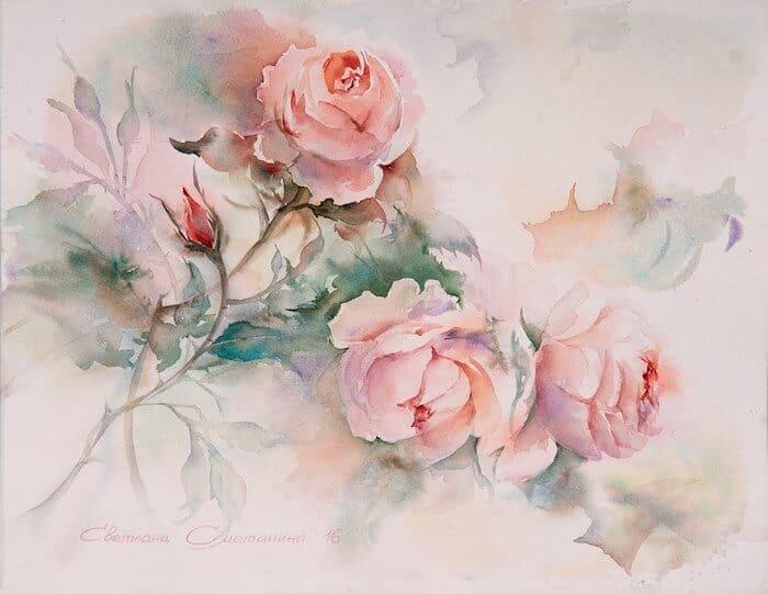 цветы акварелью, розы акварель