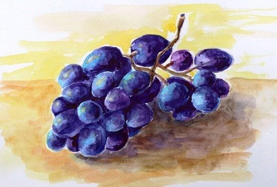 как рисовать виноград акварелью