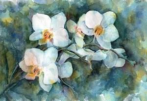 Как рисовать белые орхидеи