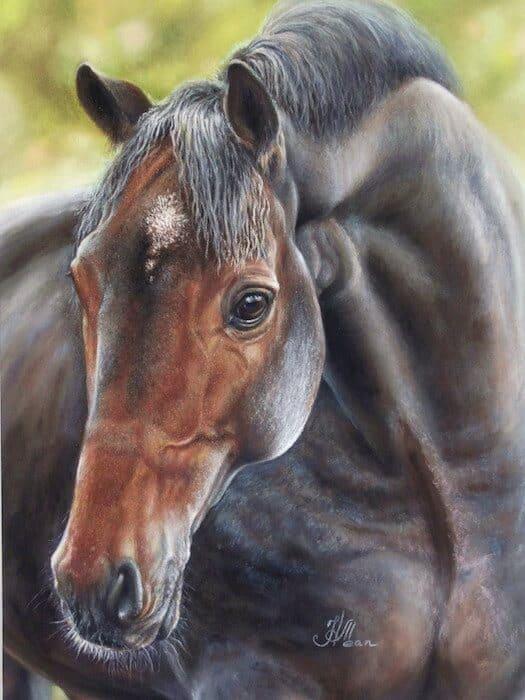 как рисовать лошадь пастелью