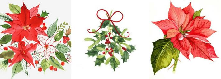 символы рождества, омела, пуансетия, рождественская звезда