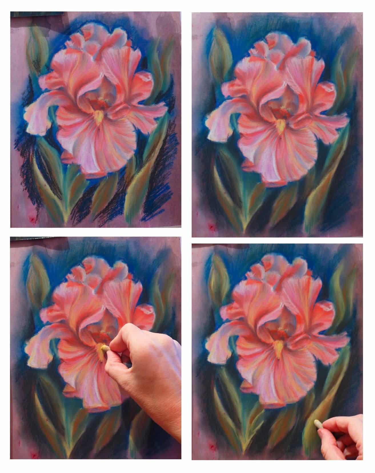 розовый ирис, рисунок поэтапно