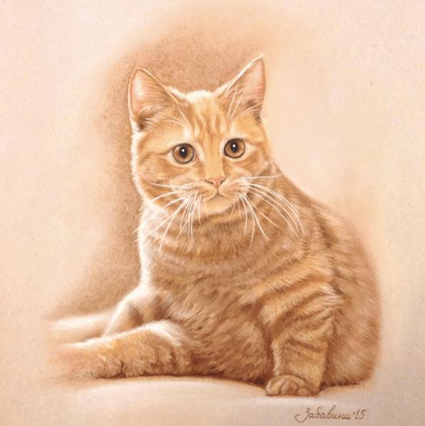 как рисовать кота