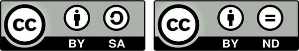 Авторское право: виды лицензий