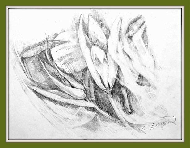 Авторская техника рисования простым карандашом Марины Трушниковой