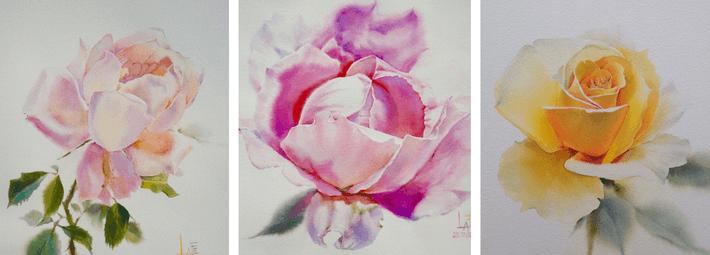 La Fe, roses