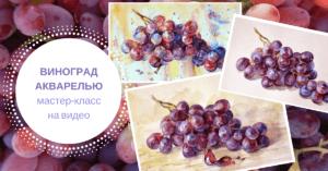 виноград, акварель, мастер-класс