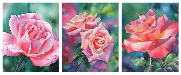 акварельные розы Барбары Фокс