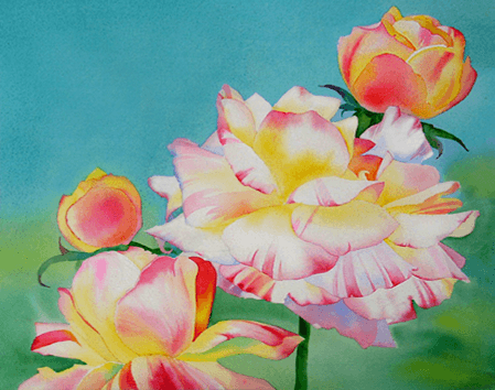 roses, Barbara Fox