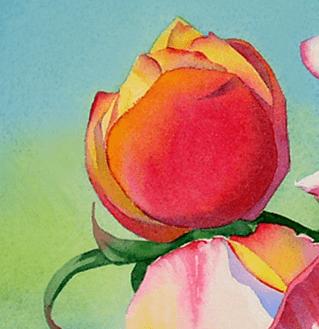 бутон розы, живопись