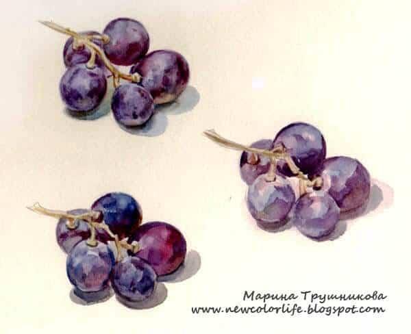 пишем виноград акварелью, Марина Трушникова