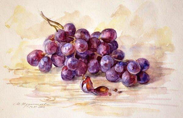многослойная акварель, гроздь винограда