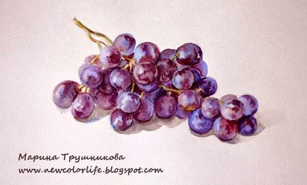 а-ля прима, однослойная живопись, виноград
