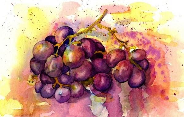 набрызг в акварели, виноград